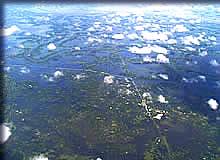 島と化した河川合流地点